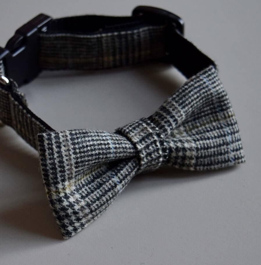 halsband mit fliege made for dogs. Black Bedroom Furniture Sets. Home Design Ideas